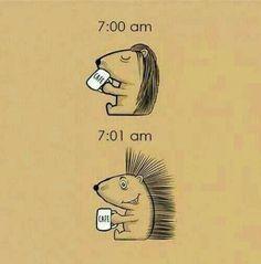 Kaffeeverrückt 🤗