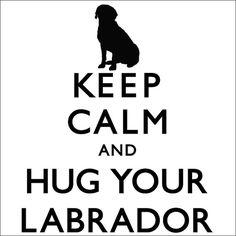 Keep Calm And Hug Your Labrador Ladies Tshirt by TheDogEmpire