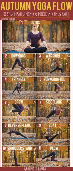yoga fitness,yoga for beginners,yoga poses,yoga stretches Iyengar Yoga, Ashtanga Yoga, Bikram Yoga, Vinyasa Yoga, Yoga Handstand, Yoga Beginners, Workout For Beginners, Yoga Flow Sequence, Yoga Sequences