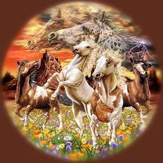 14 horses
