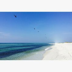 Navarre beach FL. White pure sand and emerald waters. The hidden gem of beaches along the gulf coast of FL. (Photo taken by me) ------ let me help you plan your next travel trip! Email me at journeybyjessi@gmail.com by thetravelenthusiast