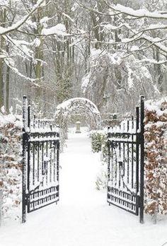 Winter Wedding | Winter Wonderland | Snowy Scene |