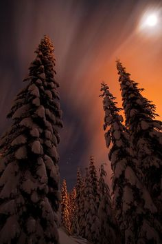 """""""I took this shot December, 2010 under a full moon at Snoqualmie Pass, WA."""" KCVensel Photography"""