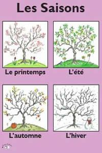 French Topic Posters from Last Word Resources