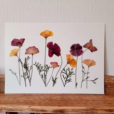 #pressedflowers#poppies#moliaflorals Flower Artwork, Pressed Flower Art, Art Pictures, Find Art, Poppies, Etsy Seller, Unique Jewelry, Handmade Gifts, Flowers