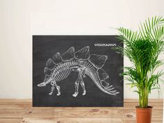 Dinosaur art, Chalkboard art, Stegosaurus print, Paleontology, Dino decor, Gift for paleontologist,  stegosaurus skeleton, PRINTABLE 11x14 by GBPrintable on Etsy Dinosaur Art, Dinosaur Prints, Chalkboard Art, Skeleton, Moose Art, Printable, Unique Jewelry, Handmade Gifts, Animals
