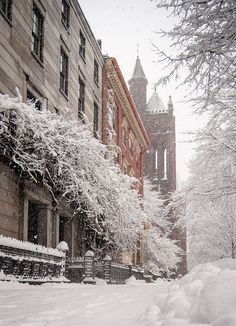 State Street, Snow. Near Longfellow Square in Portland Maine...I love this building; it's covered in wisteria vines and looks like a townhouse transplanted from Paris.