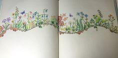 Flower path, Enchanted Forest, Johanna Basford. cathyc. pencil crayons.