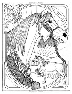 wonderful world of horses troubador color and story albu horse coloring pagescolouring pagesadult