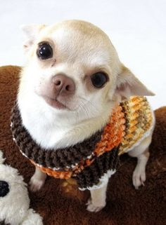 #handmade #crochet #knit Dog Jumper rustic earthy color, $20