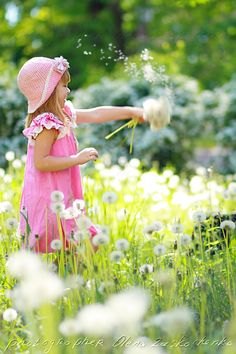 girl have fun with dandelions - adorable little girl have fun with dandelions in summer meadow
