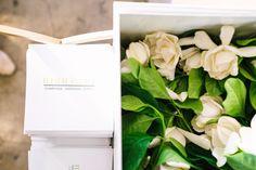 Gardenias at event | Gardenias supply | Gardenia home delivery | High Camp Gardenias | Flowers at events