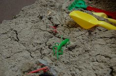 Bug Hunt - dig for bugs in the sandbox, find the gold bug to get a prize