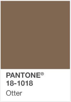 PANTONE OTTER COLOUR INSPIRATION http://www.administrie.com/colour-inspiration/