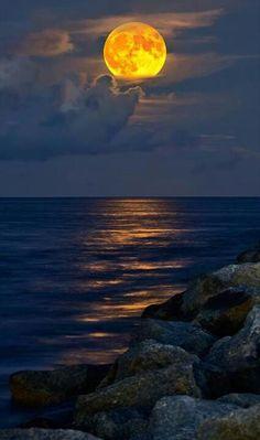 Bella Luna ✯ Full-Moon rising over Jupiter Inlet Beach Beautiful Moon, Beautiful World, Beautiful Places, Beautiful Pictures, Beautiful Moments, Amazing Photos, Amazing Places, Full Moon Rising, Moon Rise