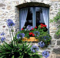 ¿Cómo será la vida de las personas que viven detrás de esas ventanas?