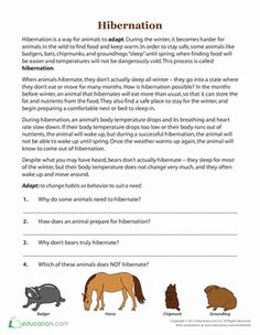 water pollution pollution worksheet 2 maysaa pinterest water pollution water and worksheets. Black Bedroom Furniture Sets. Home Design Ideas
