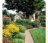 And D Landscaping Affordable Landscaping for the Sacramento Area