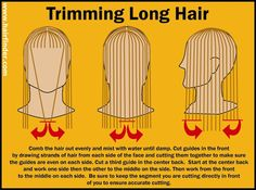 How to trim long hair in a curved line or a U-line instead of cutting it straight across. The cutting process, illustrated with a graphic. Trim Your Own Hair, How To Cut Your Own Hair, How To Trim Hair, Diy Hair Trim, Long Hair Trim, Haircuts For Long Hair, Long Hair Cuts, Layered Haircuts, Feathered Hairstyles