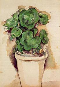 Un pot de géranium - (Paul Cezanne)