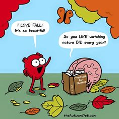 Definitely heart, but for the reasons brain gave! :D. From The Awkward Yeti.