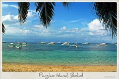 Located off of Bohol, Panglao is similar to Boracay, boasting fine white sands and crystal clear blue waters. The diving spots around the island are among the best in the Philippines and marine species are abundant on the island, with about 250 different species of crustaceans and 2500 species of mollusks, some of which are newly discovered.