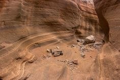 Tenerife, Canario, Antelope Canyon, Places Ive Been, Travel Inspiration, Places To Visit, Elephant, Tours, Nature