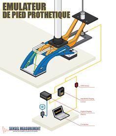 Découvrez l'application illustrée d'un émulateur de pied prothétique:  http://www.sensel-measurement.fr/fr/blog/135-emulateur-de-pied-prothetique  Notre vitrine en ligne de capteurs et instruments de mesure: http://sensel-measurement.fr