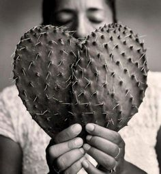 Russell Monk. Nopales, Mexico.