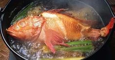 做一碗沒有腥味的魚湯,只要在水燒開以前多一步驟..!七招魚湯提鮮小技巧,師傅們都這樣做!原來這麼簡單!