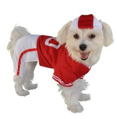 Anit Accessories Red Football Jersey Dog Costume, 8-Inch -- BuyDogSweaters.com