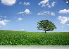 Top 10 Digital Photography Tips - The Rule of Thirds
