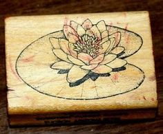 """Water Lily Rubber Stamp Comotion Rubber Stamps 2 25"""" x 1 5"""" 
