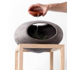 Wellspring by Martín Azúa.    Wellspring simulates an ecosystem through soil, rocks and plants, able to recover its natural balance. Like raindrops falling on the inside of a cave, purified and enriched by the water lifecycle.