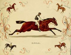 Plate 9 ~ in Album of celebrated American and English running horses (by Kinney Bros. Equestrian Decor, Equestrian Style, Equestrian Bedroom, Courses Hippiques, Derby Horse, Horse Illustration, Horse Posters, Horse Books, Vintage Horse