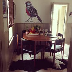 Emma O'Brien has placed one of our beltie hides with her new dining setting Kitchen Table Chairs, Table And Chairs, Dining Set, Dining Table, Cutest Dog Ever, West Highland White, White Terrier, Cow Hide, Westies