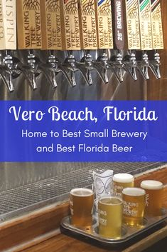 Vero Beach, Florida's Walking Tree Brewery receives top honors for Best Florida Beer award and Best Small Brewery Award in the state of Florida at the. Vero Beach Disney, Vero Beach Florida, Visit Florida, Florida Beaches, Palm Beach, Florida Camping, Florida Vacation, Florida Travel, Florida Home