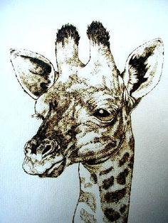 giraffe pyrography | giraffe by adri and cassie pretorius pyrography on paper image ...