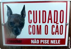 Beware the dog.