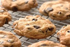 Self-Rising Chocolate Chip Cookies   Recipe