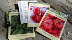 How to keep a garden journal - Homegrown & Healthy