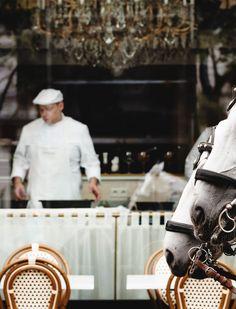 Die Legende der Jahrhundertwende zieht an die Wiener Ringstraße. Das Restaurant Meissl & Schadn zelebriert die Wiener Küche.