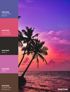 Palettes / Color : No. 14 Desktop Screenshot, Palette, Color, Colour, Pallets, Colors
