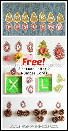 FREE Pinecone Letter and Number Cards Earth Science Activities, Fall Preschool Activities, Alphabet Activities, Learning Numbers, Learning Letters, Pre Reading Activities, Planting For Kids, Pine Cones, Homeschooling Resources