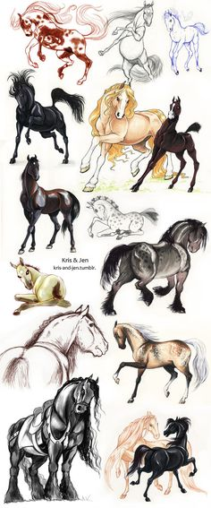 Horse drawings, beautiful horses stepping out, leaping and prancing. Pretty Horses, Horse Love, Beautiful Horses, Animals Beautiful, Horse Drawings, Animal Drawings, Cool Drawings, Pencil Drawings, Animal Sketches