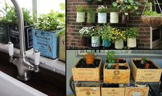 diy vegetable garden ideas for small apartment containers - Google Search