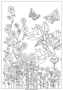 Abundance on a Page 1 Colouring-In page