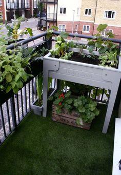 plantes aromatiques et fleurs au balcon tapissé de gazon artificiel