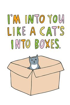 I'm into you like a cat's into boxes.