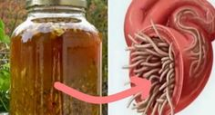 This natural antibiotic is regarded to be the most powerful one by numerous experts, and it effectively cures infections and destroys parasites.  The master cleansing tonic is, in fact, Continue Reading →